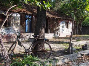 Abandoned house, island of Karainager, Northern Sri Lanka