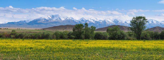 Highway Scenery in Kyrgyzstan
