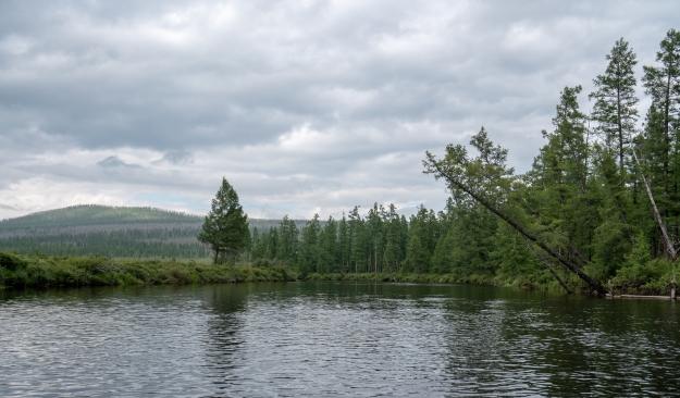 Siberia 2 (111)